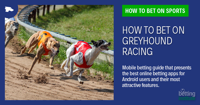 How do you bet on greyhound racing horse race betting rules in texas